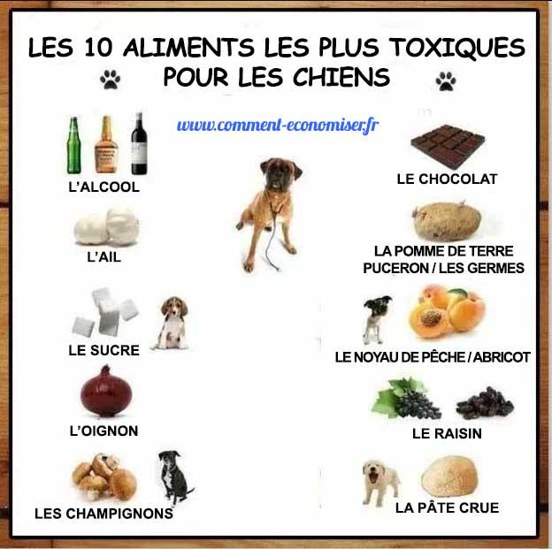 les 10 aliments les plus toxiques pour les chiens que tout propri taire de chien doit conna tre. Black Bedroom Furniture Sets. Home Design Ideas