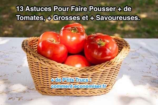 13 astuces pour faire pousser plus de tomates plus grosses et plus savoureuses. Black Bedroom Furniture Sets. Home Design Ideas