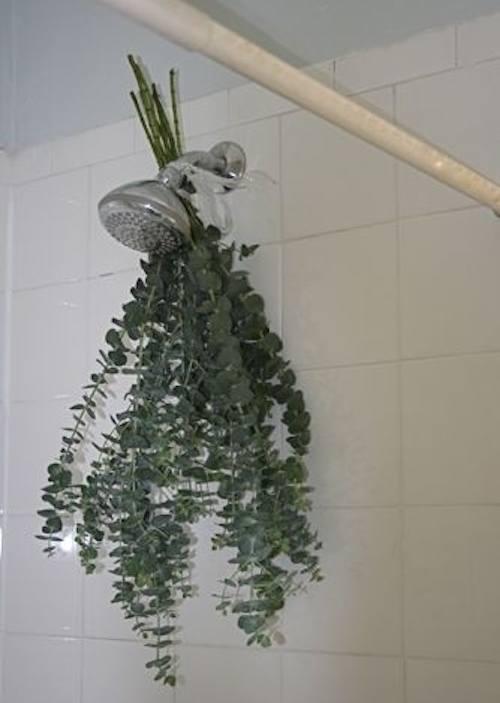 41 astuces pour votre maison qui vont vous simplifier la vie - Enlever la moisissure dans la douche ...