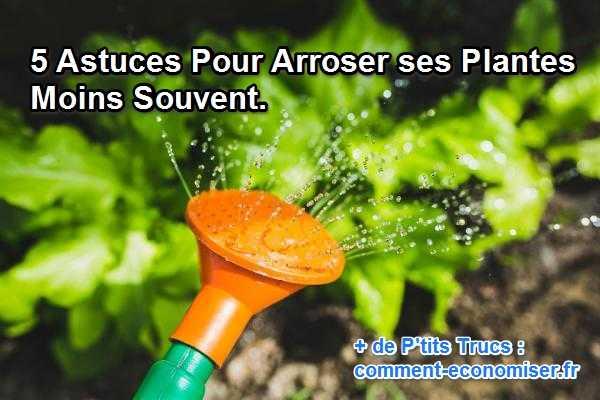 5 astuces pour arroser ses plantes moins souvent - Comment bien arroser ses plantes ...
