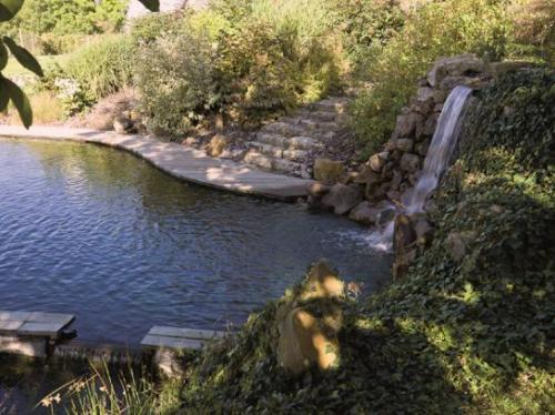Piscine cologique les secrets d 39 une baignade au naturel for Piscine naturelle cascade