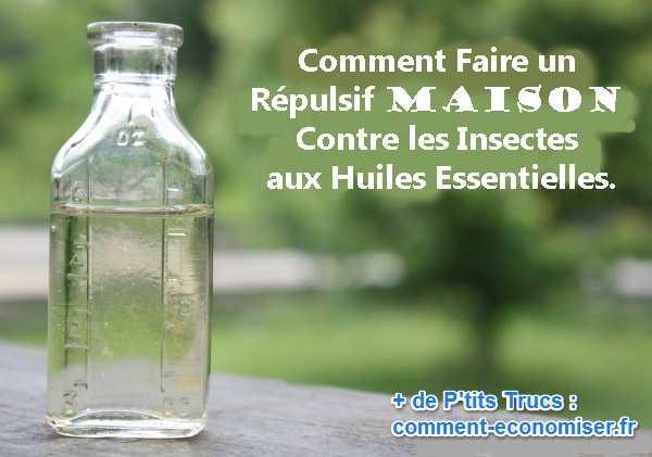 Produit anti insecte maison prise produit maison carrefour des plantes recette n 2 lanterne - Huile essentielle anti mouche maison ...
