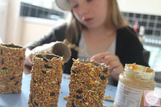 comment faire une mangeoire pour oiseaux avec un rouleau de papier toilettes. Black Bedroom Furniture Sets. Home Design Ideas
