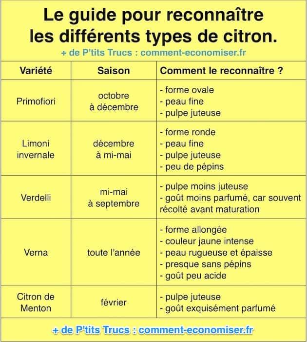 Comment reconna tre facilement les diff rentes vari t s de citron - Quand cueillir les citrons ...