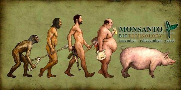 ÉVITER LES PRODUITS MONSANTO Monsanto-marques-a-eviter