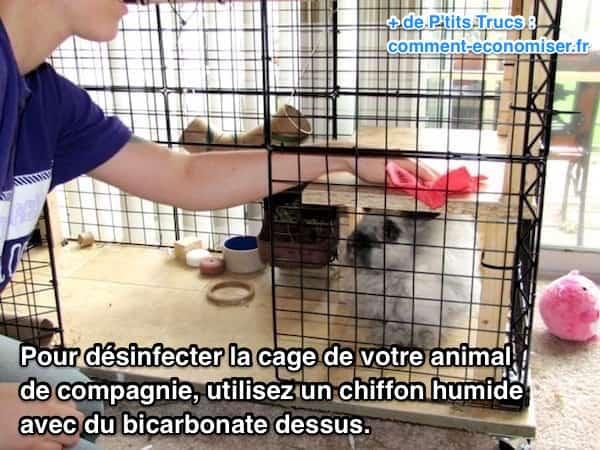 Comment d sinfecter la cage de votre animal de compagnie - Nettoyer un four avec du bicarbonate ...