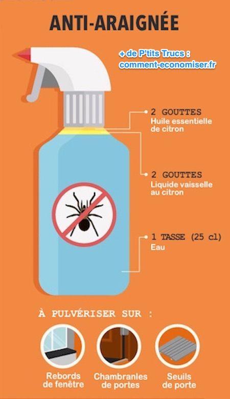 Anti insecte maison amazing sprayanti pique ml with anti for Anti mouche maison