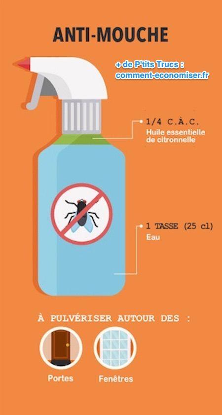 Anti mouche maison diy test un antimouche maison recette for Anti mouche maison