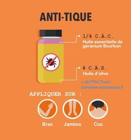 7 r pulsifs naturels contre les insectes l 39 efficacit - Anti puceron naturel huile d olive ...