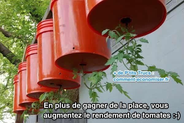 Comment faire pousser des tomates l 39 envers pour gagner - Faire pousser tomate cerise ...