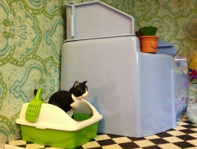 marre de l 39 odeur de la liti re de votre chat mettez du talc. Black Bedroom Furniture Sets. Home Design Ideas