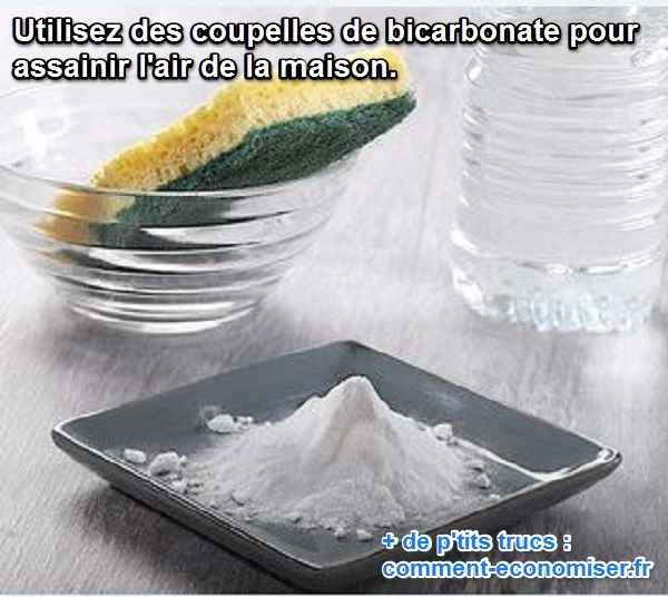 les coupelles de bicarbonate assainissent l'air