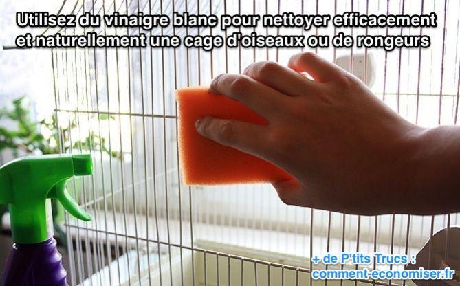 le meilleur nettoyant naturel pour une cage d 39 oiseaux ou de rongeurs. Black Bedroom Furniture Sets. Home Design Ideas