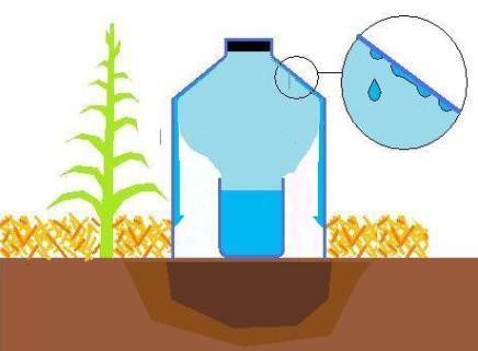 Conomisez de l 39 eau cet t avec l 39 irrigation solaire au for Arrosage goutte a goutte fait maison