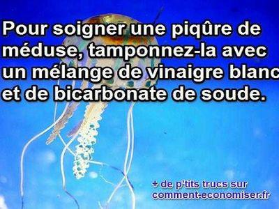 L 39 astuce incroyable pour soigner une piq re de m duse - Dosage bicarbonate de soude et vinaigre blanc ...
