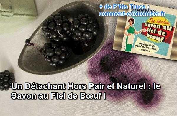 un d tachant hors pair et naturel le savon au fiel de b uf. Black Bedroom Furniture Sets. Home Design Ideas