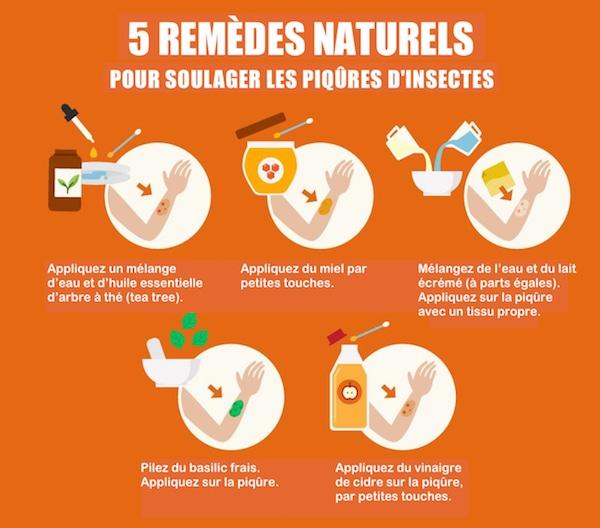 7 r pulsifs naturels contre les insectes l 39 efficacit redoutable - Piqure aoutat et huile essentielle ...