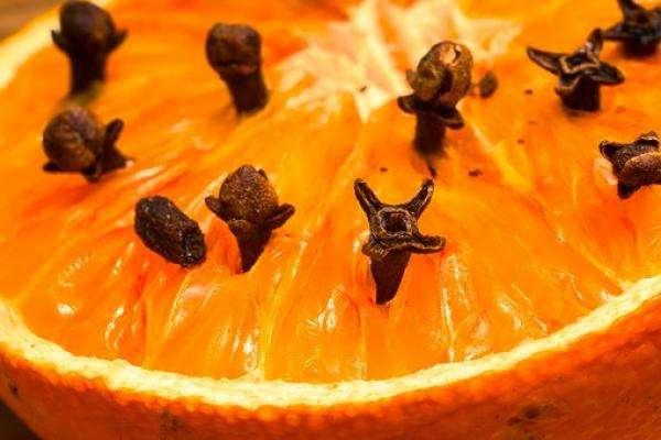 """"""" Trucs et Astuces en tout genre """" Maria-Lys Clou-girofle-orange"""
