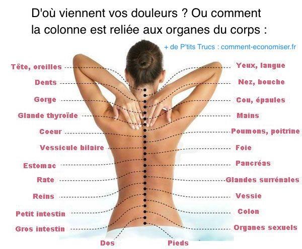 """"""" Santé Au Naturel """" Origines-douleurs-dos-corps"""