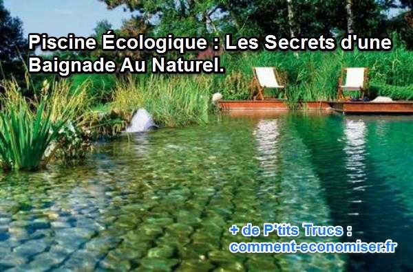 Piscine cologique les secrets d 39 une baignade au naturel for Piscine de grand champ